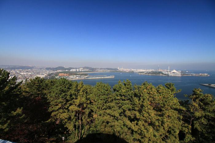 野島公園キャンプ場の俯瞰図
