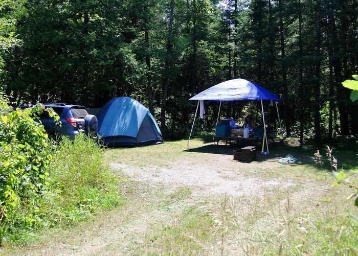 林の中に貼ってあるテントの写真