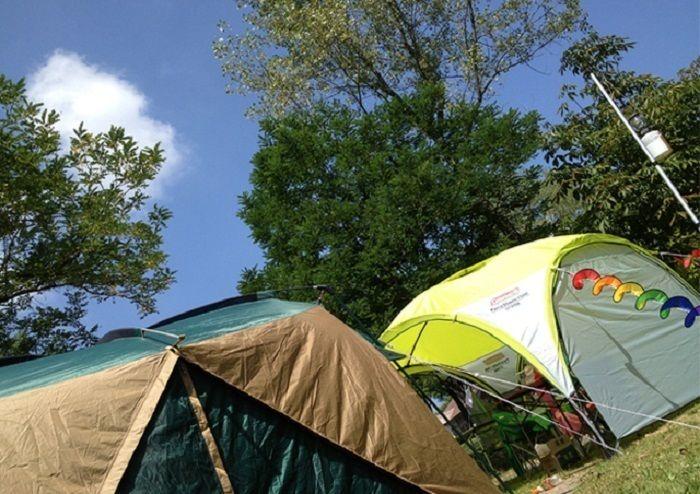 キャンプ場の貼ってあるテントの写真