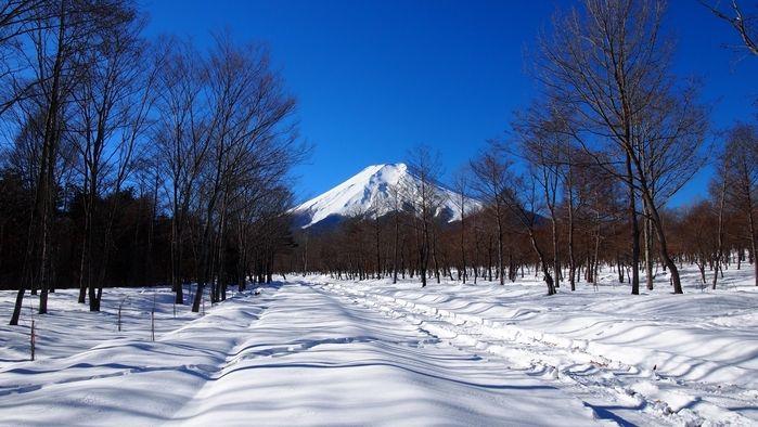 東海での冬キャンプの様子