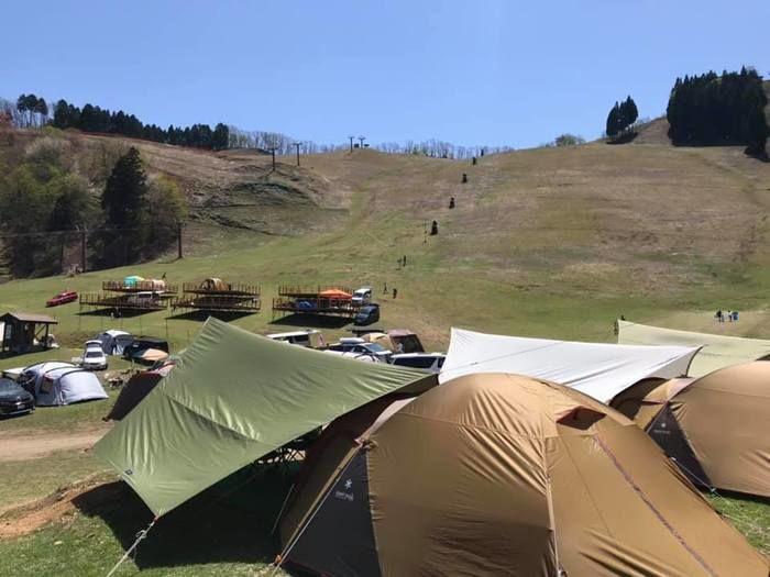 若杉高原おおやキャンプ場のサイト風景