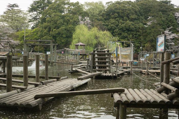 清水公園キャンプ場のアスレチック