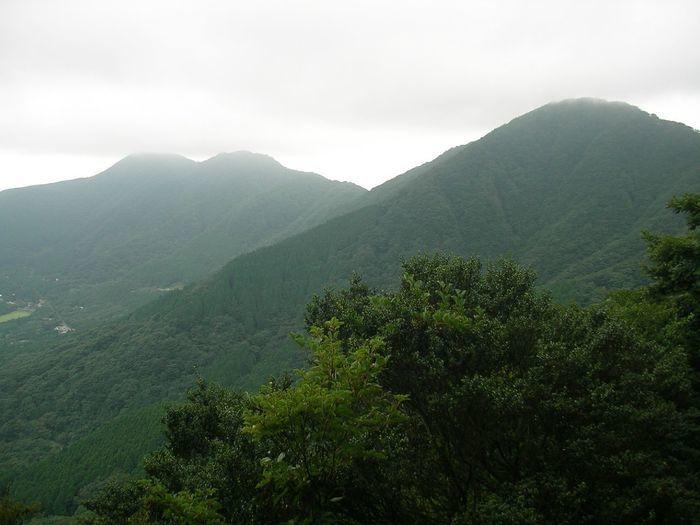 霧がかった緑の山