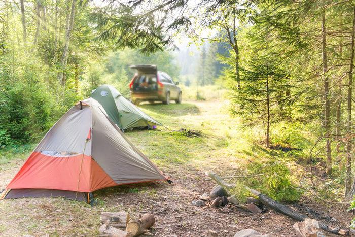 キャンプ場のテントサイトの写真