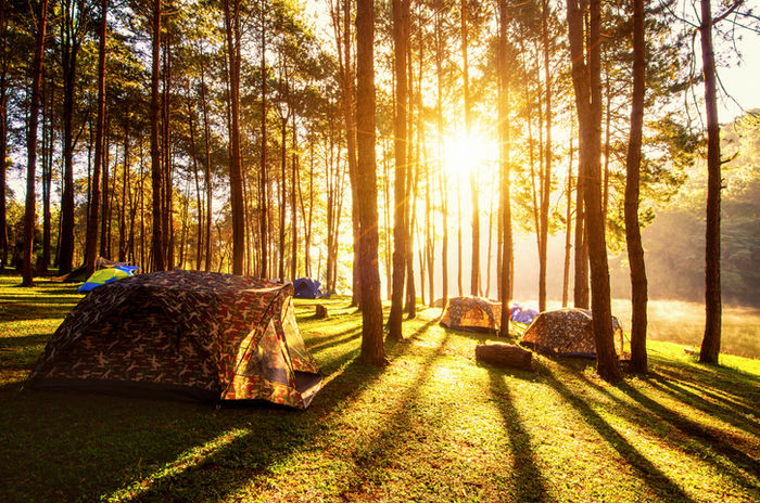 秋の朝日に照らされたテントの写真