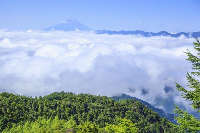 雲取山からの風景