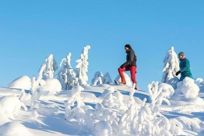 雪山を散策する様子