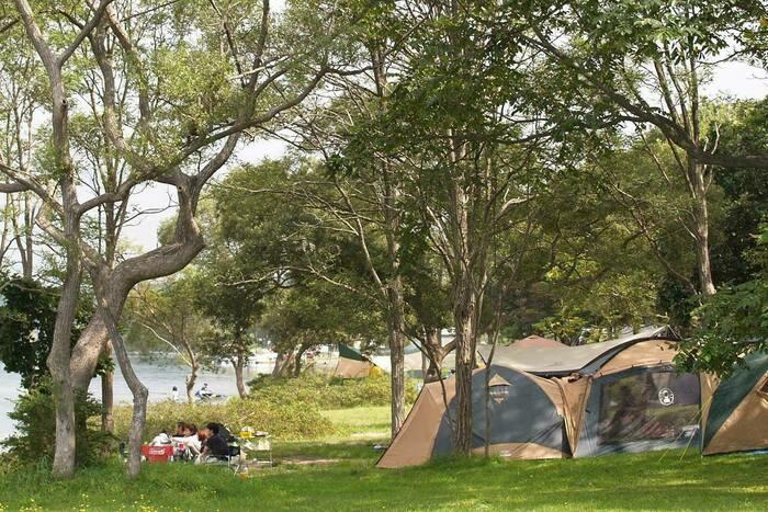 小川原湖畔キャンプ場でのキャンプの様子