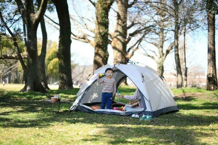クイックキャンプのテント
