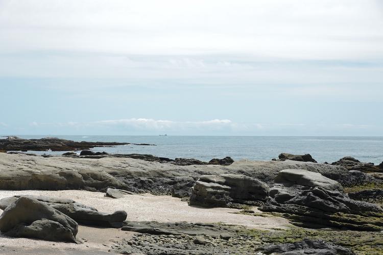 白浜フラワーパーク O`ceansから見た海