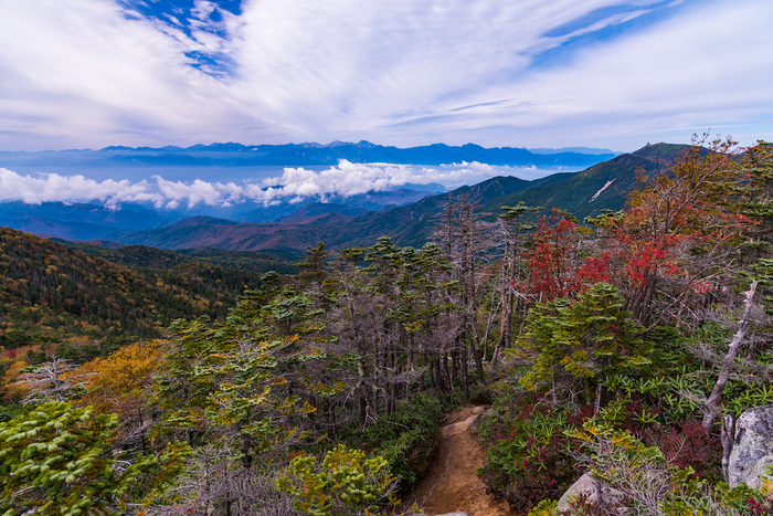 金峰山から見える紅葉の景色
