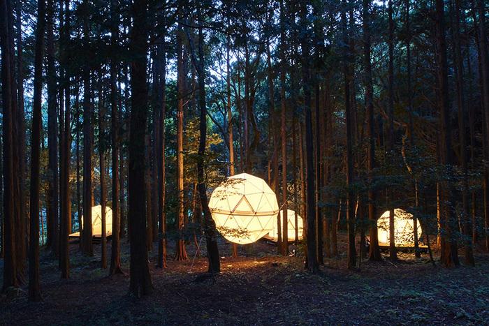 森の中の球体テント