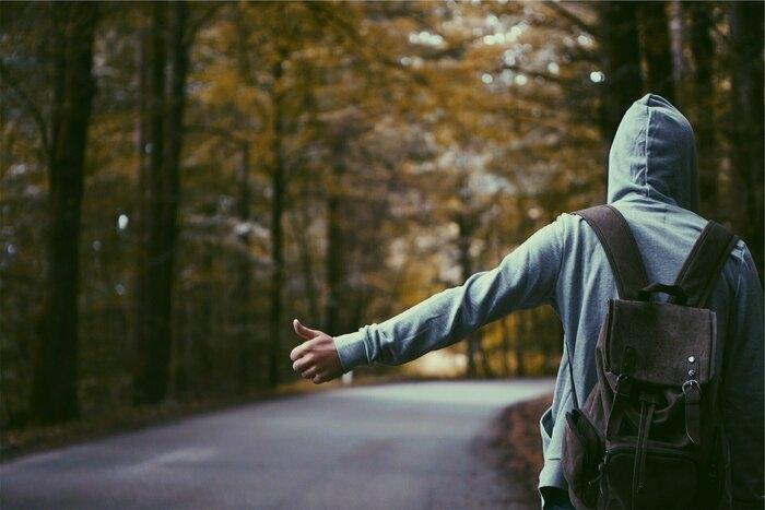山の中を軽快に歩いている人