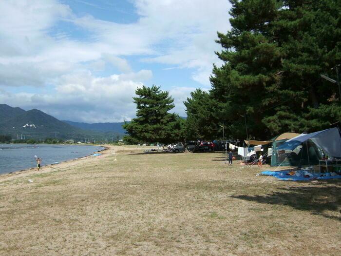 ニュー白浜オートキャンプ場のキャンプサイト