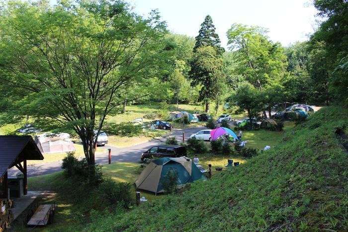 栗の木オートキャンプ場の様子