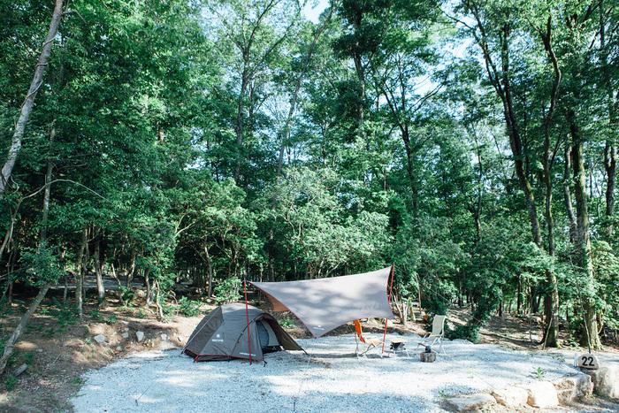 杜のテラスキャンプサイト