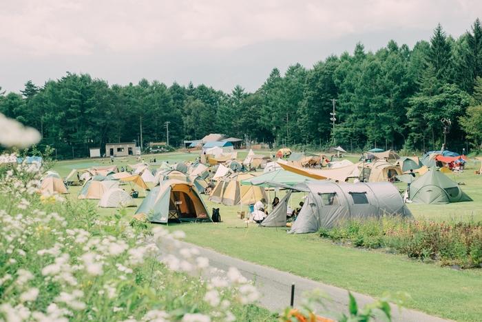 CAMPusのキャンプサイト
