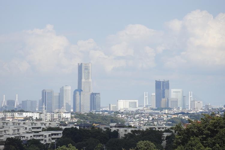 横浜のランドマークが見渡せる高台から見た景色