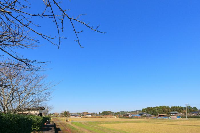 千葉県いすみ市
