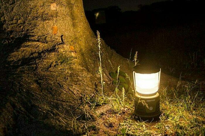 ジェントスのLEDランタンが木の根っこに置いてある画像