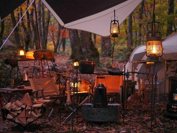 紅葉キャンプの様子