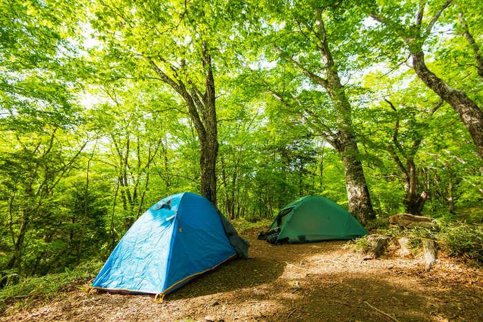島に張ってあるテントの画像