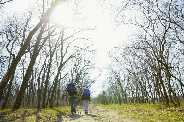 でかいリュックを背負って自然をハイキングしている人達の画像
