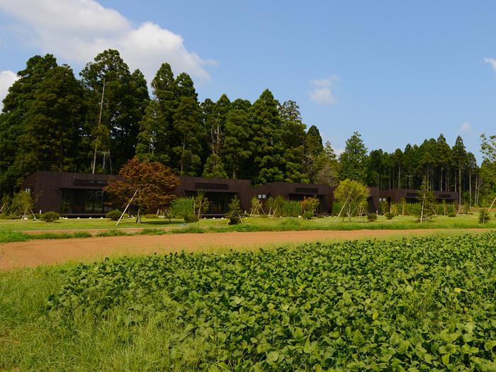 ザファームの貸農園の画像