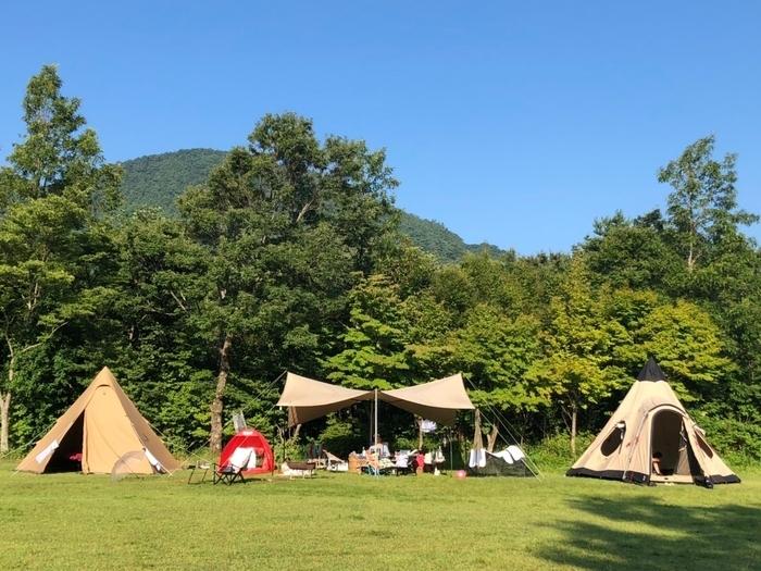 背後が林の芝地にタープを挟んで2つの三角テント。