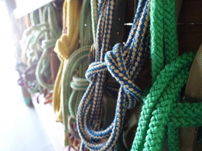 壁にかけられた色々な色のロープ