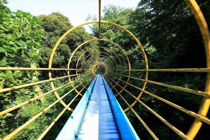 アスレチックの森のロングローラー滑り台