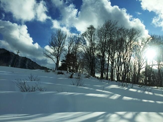 美方高原ウィンターフェスティバル会場の雪景色