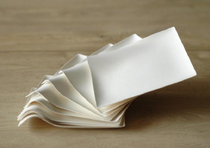 WASARAの紙皿