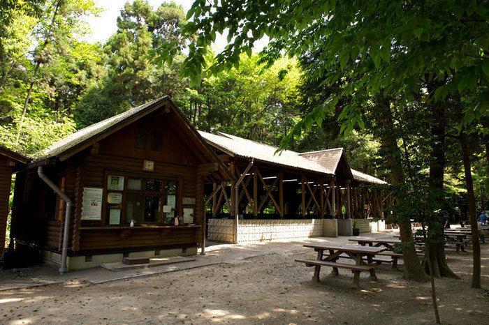 自然が豊かな泉の森ふれあいキャンプ場
