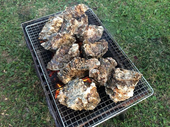 バーベキューで焼かれる牡蠣