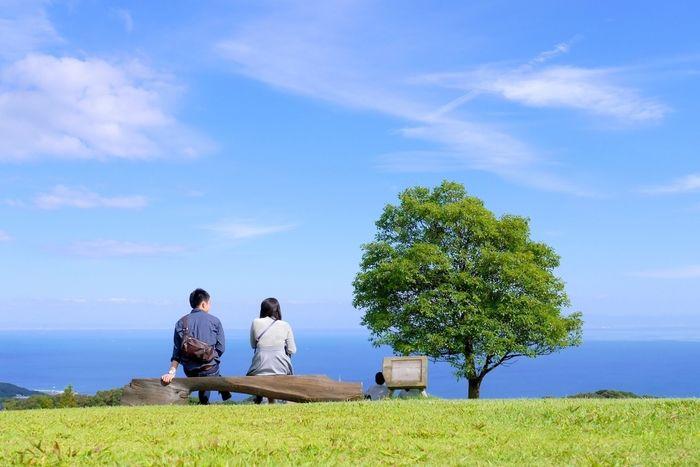 海が見える丘でのデートの様子