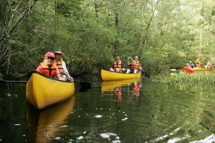 川でカヌーを楽しむ人々