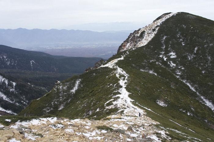 尾根の山頂の様子