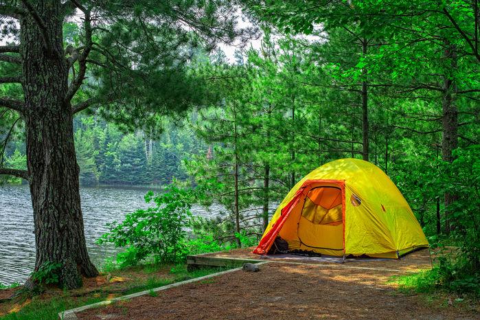 森林の中にある黄色のテント