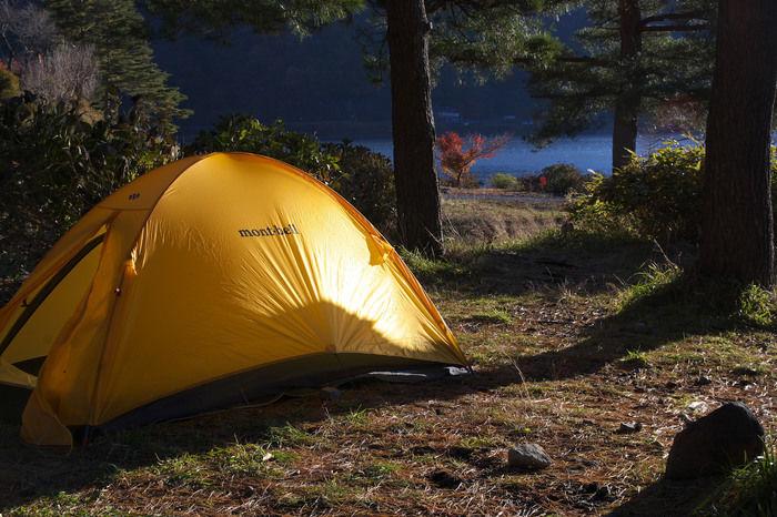 木の下に張られたテント