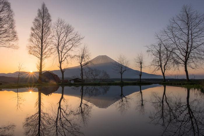 朝日に照らされ、河口湖の水面に映る富士山