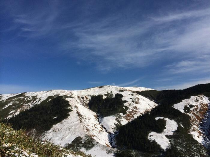 雪が積もった巻機山