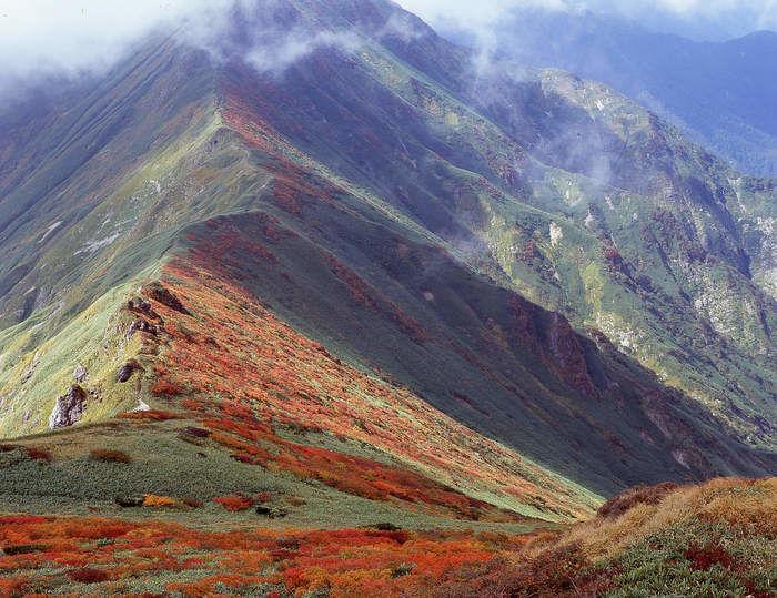 紅葉した高嶺