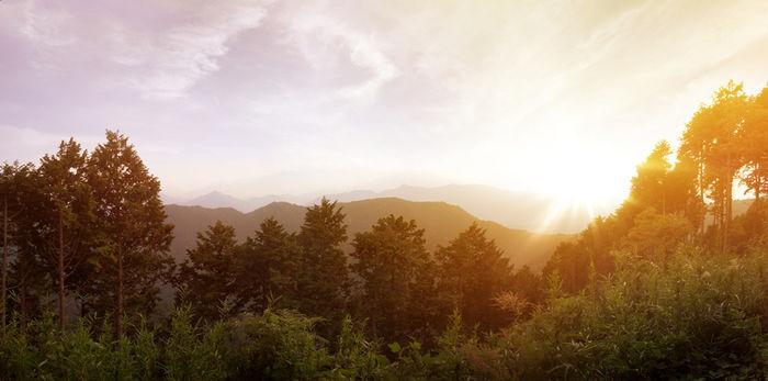 高尾山から見える山々