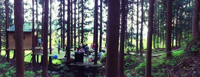 nozawa green fieldのキャンプサイトの様子