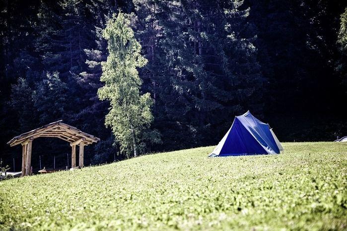 芝生とテント