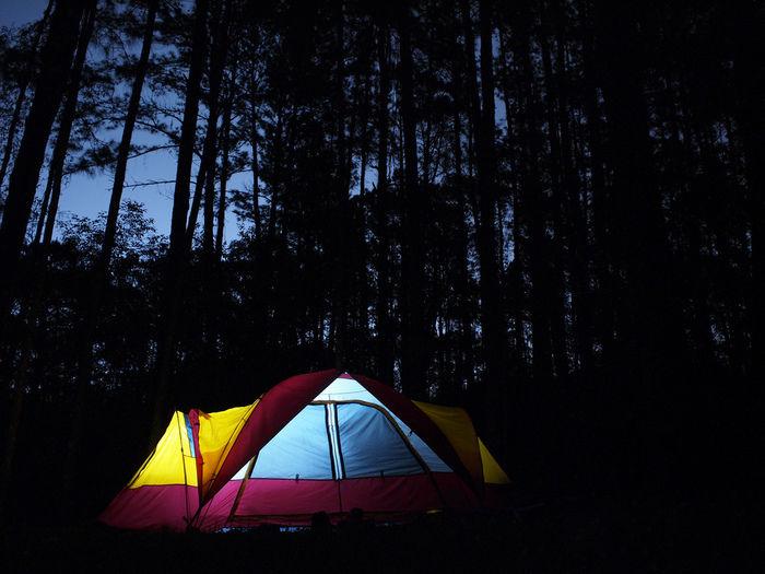 暗闇で存在感を放つカラフルなテント