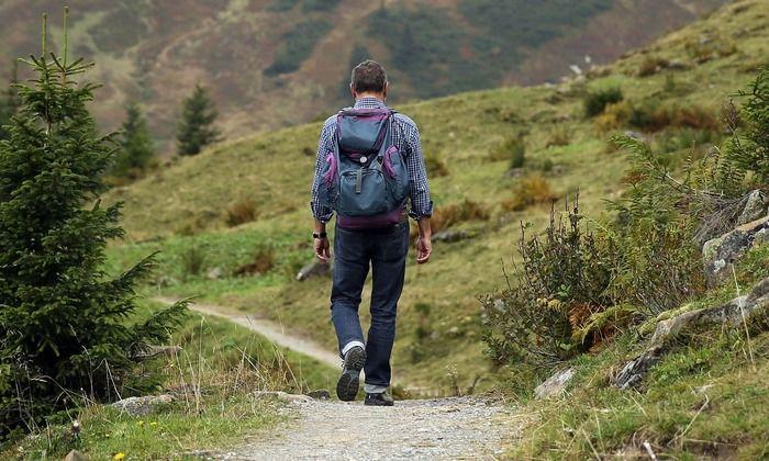 山道を歩く男性の後ろ姿