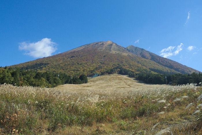 すすきと鳥取県の大山