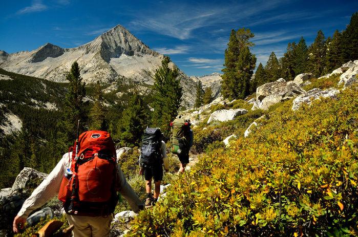 険しい山道を列になって登る人々の後ろ姿